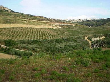 Trekking in Malta and Gozo